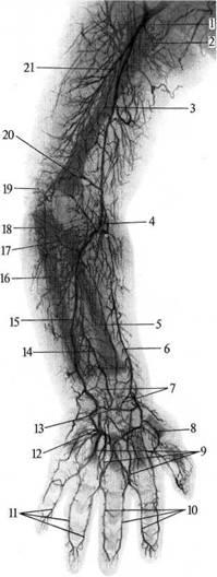 Фиксаторы на коленный сустав после операции
